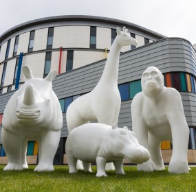 the-big-stampede-animals-at-royal-hospital-for-children-in-glasgow