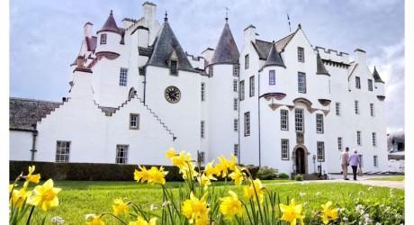 Press - Castle in Spring