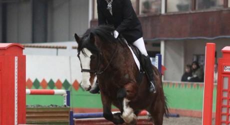Craig Bennison-show jumping 1[1][2] 3