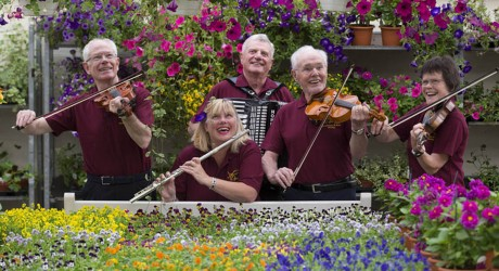 Fiddlers Cardwell Garden MFG