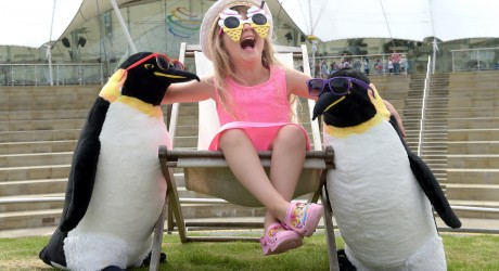 Ava Wright and her penguines enoying the sun at Dynamic Earth