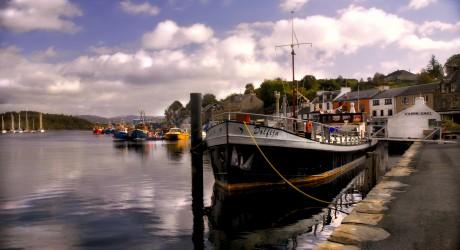 27779_Dolfijn-Tarbert-Loch-Fyne-2