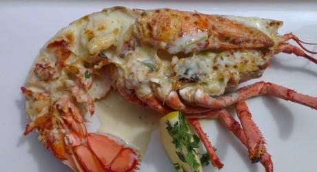 Lobster allmedia