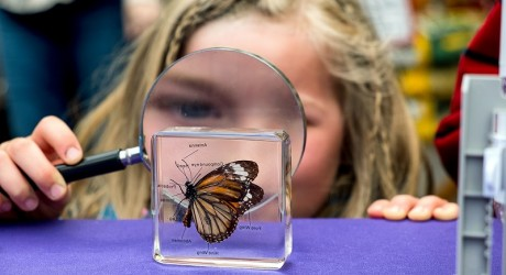 Inverness_Science_Festival